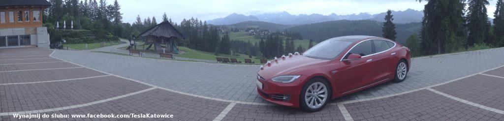 Tesla Bukowina Tatrzanska wynajem do ślubu