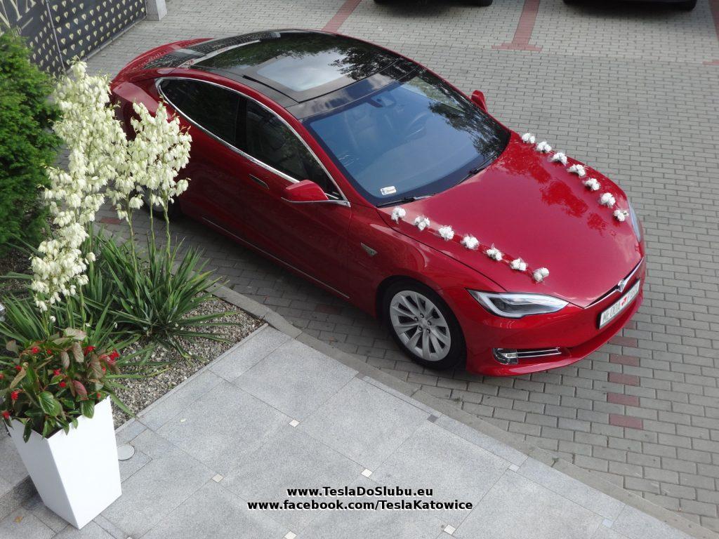 Tesla wynajem na wesele Mielec (woj. podkarpackie).